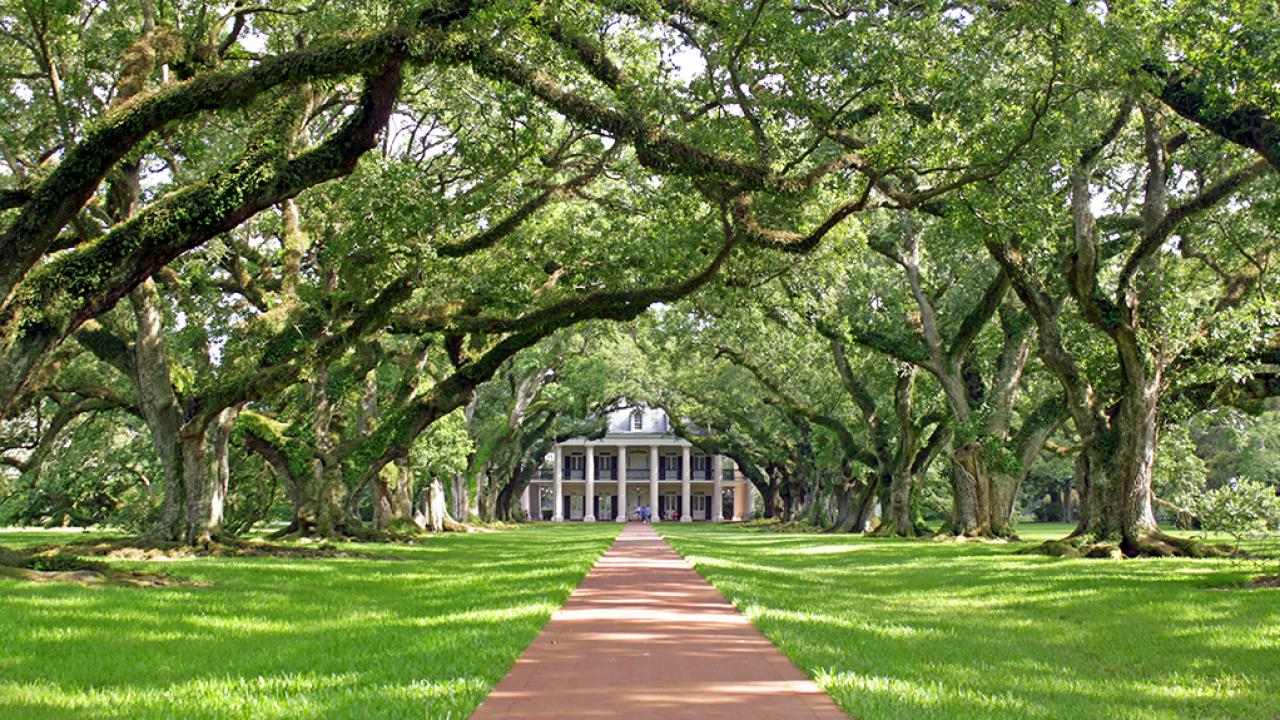 Oak Alley Plantation Bed and Breakfast in Louisiana