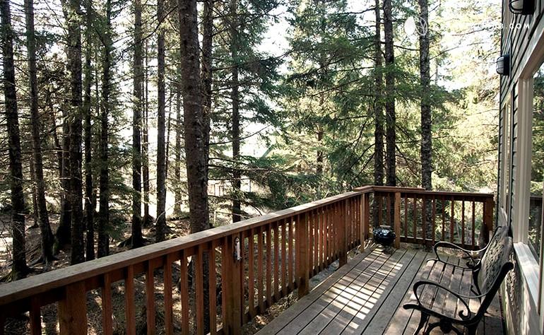 Luxurious Treehouse in Alaska