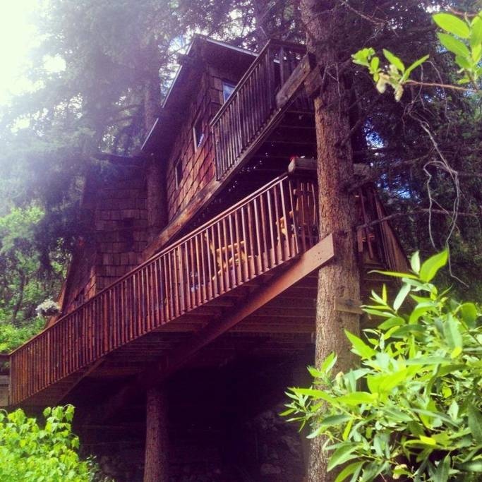 Rocky Mountain Treehouse in Colorado