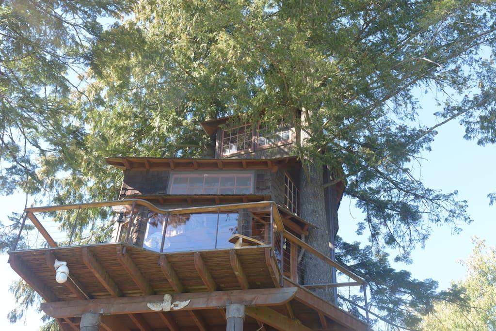 lakeside treehouse in Idaho