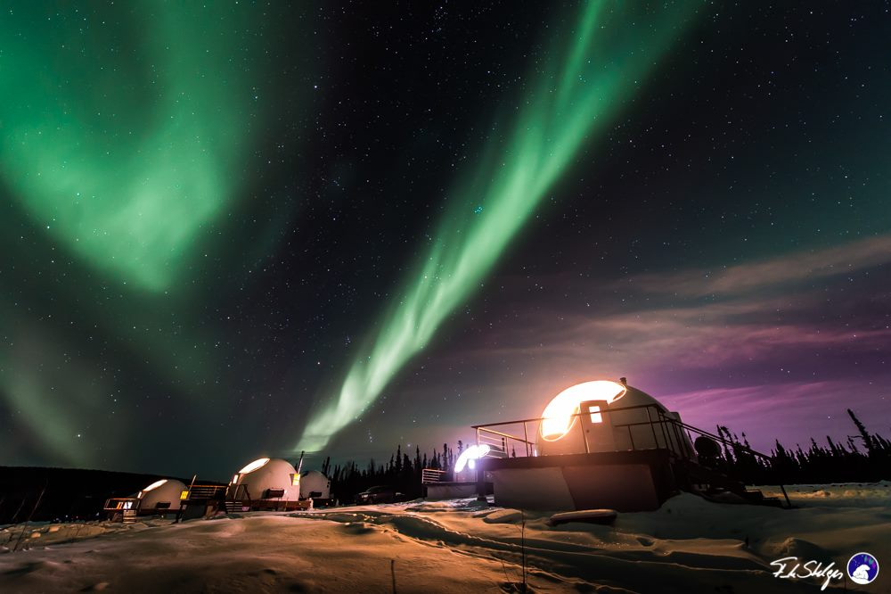 Glamping in Alaska at the Borealis Basecamp